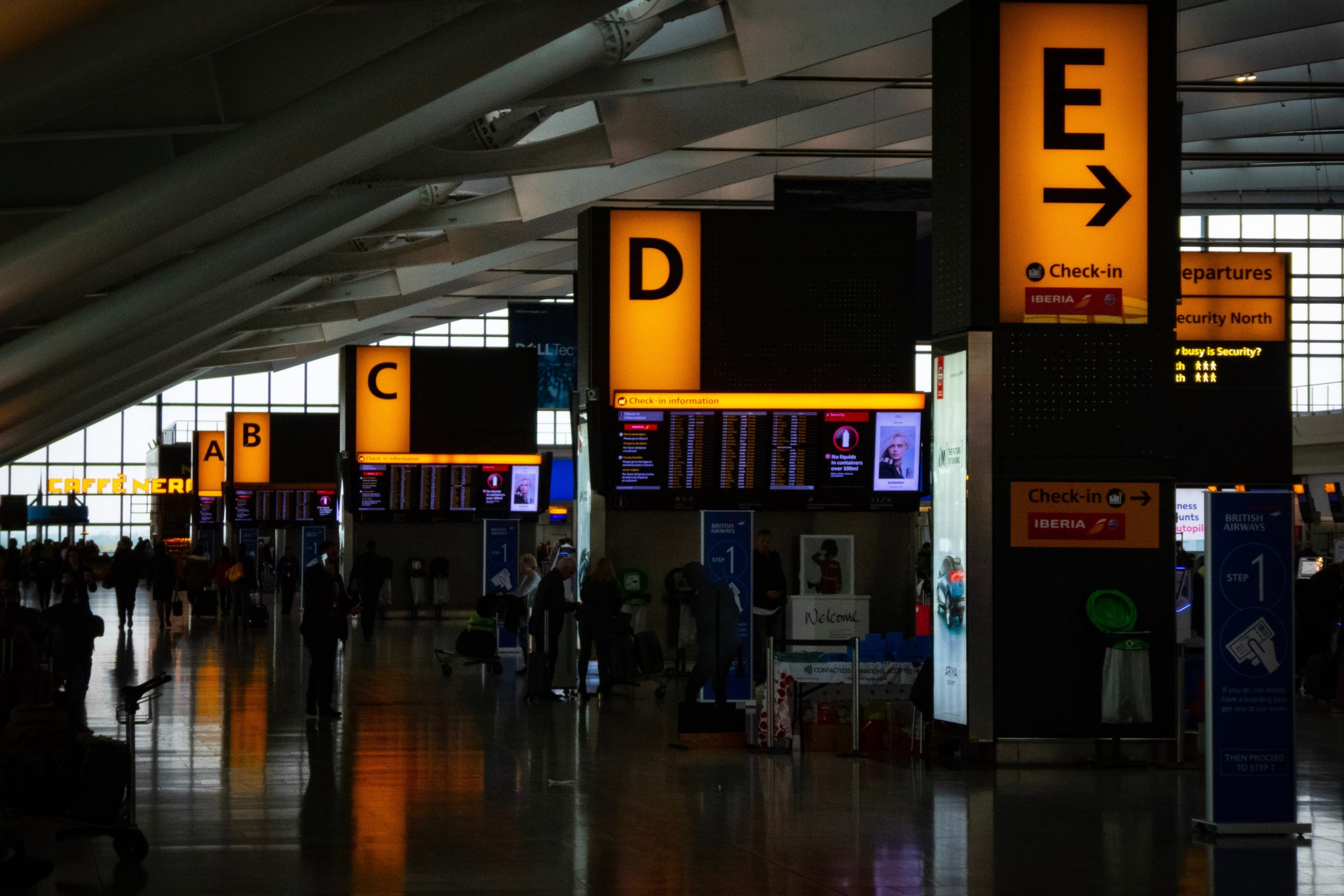 Airline Carriers Baggage Fees & How to Avoid!