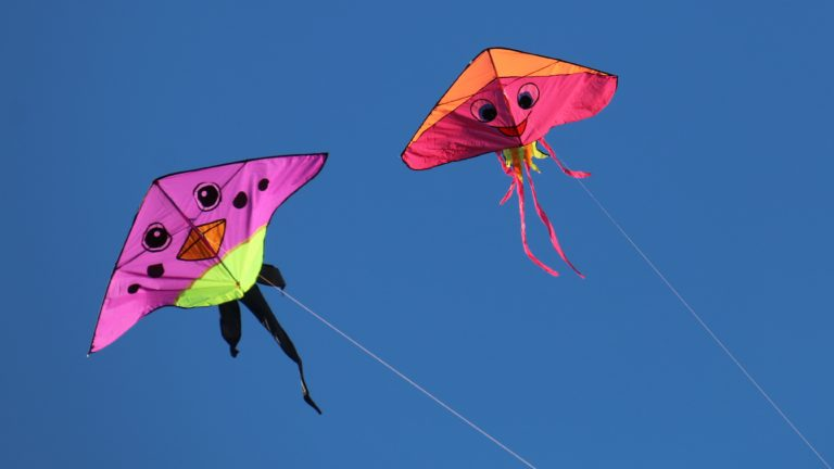Top 6 Kites Perfect for the Beach 🪁