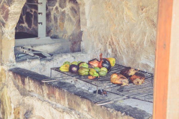 Charcoal vs Gas BBQ Grill 🚀🥩